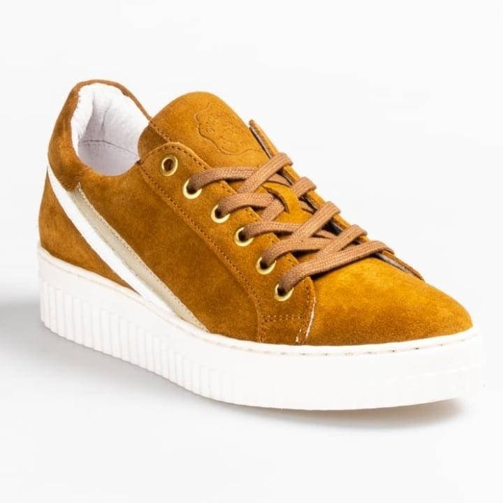 Shoecolate 8.29.02.142.01