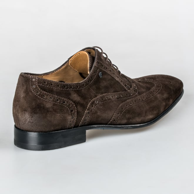 Van Bommel 19295/01 - Van Bommel
